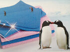 Animal Pet Super Absorbent Hydrophilic Drying Towel Cat Dog Dryer, Bathing Swim