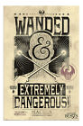 Fantastic Beasts Extremely Dangerous Poster New - Maxi Size 36 x 24 Inch