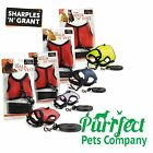 Small N Furry Walk N Vest - Harnesses & Lead for Rabbits, Guinea Pigs & Ferrets