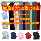 New 100% Egyptian Cotton 200 Thread Count Fitted Bedding Sheets 23 CM Deep Fit