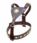 New Leather Dog Harness - All sizes available now  Brown or Black
