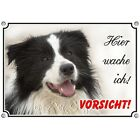 Hundeschild - Border Collie - Metallschild - Hütehund
