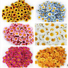 100PCS Artificial Small Chrysanthemum Daisy Silk Flower Home Party Decoration