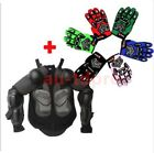 KID/Youth/BOY/GIRL BODY ARMOUR + GLOVES Motorcycle/Motocross/Bike/Sports/Game