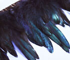 "Yrb13 - Brown Black (4""-8"" Wide) Rooster Feather Fringe Trim Facinator Material"