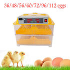 36/48/56/60/72/96/112 Chicken Egg Incubator Control Automatic with Peep Hole