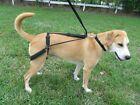 Horgan Harness NO PULL NO CHOKE  back leg Dog Harness- Orthopedic Vet Designed-