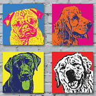 Pop Art Dogs Canvas Print - The Dogs Of Andy Warhol gift bright colours