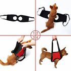 Dogs Lift and Assist Rehabilitation Support Harness Pet Out Carrier Collar Strap
