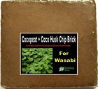 SMILING WORM - Coco Brick 10 Quart Organic Potting Soil Mix for Wasabi