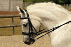 SALE Rhinegold German Leather Comfort Double Bridle inc.Reins LAST TWO £49.99