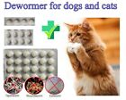 Dewormer for Dogs Cats, New, Free Shipping similar to Bayer Droncit
