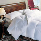 Luxury Hotel Style EnviroLoft Down Alternative Comforter by DOWNLITE