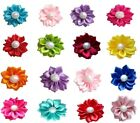 20Pcs Small Dog Cat Flowers Hair Bows W/Rubber Bnads Pet Grooming Accessories
