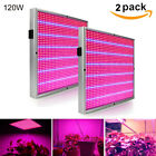120W Full Spectrum LED Plant Grow Light Vegetable Flower Indoor Bulb Lamp Growth