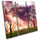 Cherry Blossom Trees Skyline Landscapes TREBLE CANVAS WALL ART Picture Print