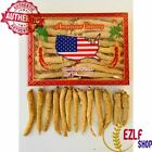 4-16oz Hand Selected American Ginseng Root Long and Medium Grade A+ Gift Box on eBay