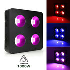500W-2000W Dimmable COB LED Grow Light for Indoor Plants Veg Flower Hydroponic