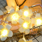 ED Lights Plumeria Flower 10 Ft/3M 20 Leds Battery Powered Indoor Outdoor Decor