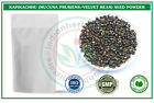 Kapikachhu (Mucuna pruriens / Velvet Bean) Seed Pure Herbal Powder