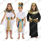 Girls Ancient Egyptian Pharaoh Fancy Dress Book Day Egypt Queen Costume Outfit