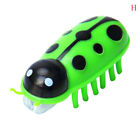 Battery powered fast moving micro robotic bug toy entertaining pets cat toysXSUS