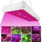 Full Spectrum 1000W LED Grow Light Panel Lamp Hydroponic Plant Growing  BE