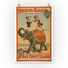 At gay Coney Island Musical Comedy Poster #3 (Art Posters, Wood & Metal Signs)