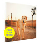 Dog Home Decor Personalized Dog Wall Drecor Canvas Print Your Photo Gallery Wrap