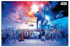 Laminated Star Wars Universe Poster Official Licensed 24 x 36 Inches
