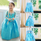 Toddler Girl Kid Children Princess Anna Elsa Cosplay Costume Kids Party Dress