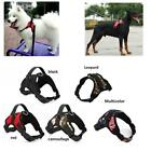 Pet Dog Harness Small Dog Harness For Puppies Adjustable Nylon Chest Strap DS