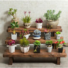 Ladder Plant Stool Bench Shelf Flower Stand Rack Indoor Outdoor Garden Display