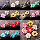 NEW DIY 23x22mm Vintage Cameo Resin Cabochons Flower Flatback Wholesale Colorful