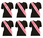 ELEGANT PINK HEN NIGHT SASH PARTY SASHES ACCESSORIES OUT DO PINK WRITING HENS