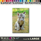 Baby White Tiger ANIMALS  Canvas Print Framed Photo Picture Wall Artwork WA
