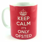 KEEP CALM IT'S ONLY OFSTED TEACHER'S GIFT MUG CUP & CARRY ON LESSON PLAN FUNNY