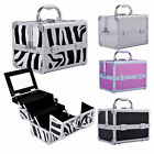 Pro Aluminum Makeup Train Case Jewelry Box Cosmetic Organizer Storage Lockable