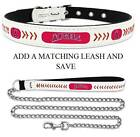 Anaheim Angels Leather Dog Collar Officially Licensed MLB Pet Cat Leash Lead NEW