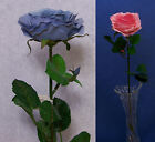 "Six Quality Choose 23"" Ruby Rose Artificial Faux Silk Flower Stem"