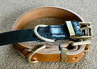 "1.1/4"" BRIDLE LEATHER AND BRASS DOG COLLAR,SHUTZHUND BULL TERRIER"