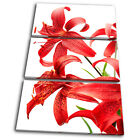 Floral Red Flowers  TREBLE CANVAS WALL ART Picture Print VA