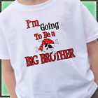 Pirate I'm going to be a Big Brother Shirt  Baby announcement  skulls treasure