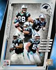 Carolina Panthers 2014 NFL Team Composite Photo (Select Size)
