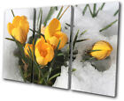 Floral Flowers In Snow TREBLE CANVAS WALL ART Picture Print VA