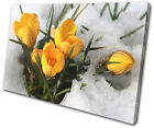 Floral Flowers In Snow SINGLE CANVAS WALL ART Picture Print VA