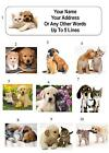 30 Real Kitten / Puppy, Cat / Dog Personalized Address Labels