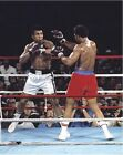 George Foreman vs. Muhammad Ali Rumble in the Jungle 1974 Photo (Select Size)