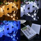 2M 20 LEDs Battery Operated Mini LED Copper Wire String Fairy Light Xmas Decor H