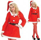 Santa Sweetie Christmas Costume - New - Fancy Dress - Womens